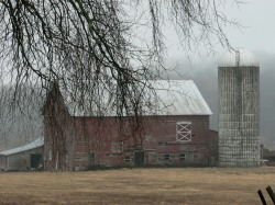 Gurski Rd barn and silo in fog
