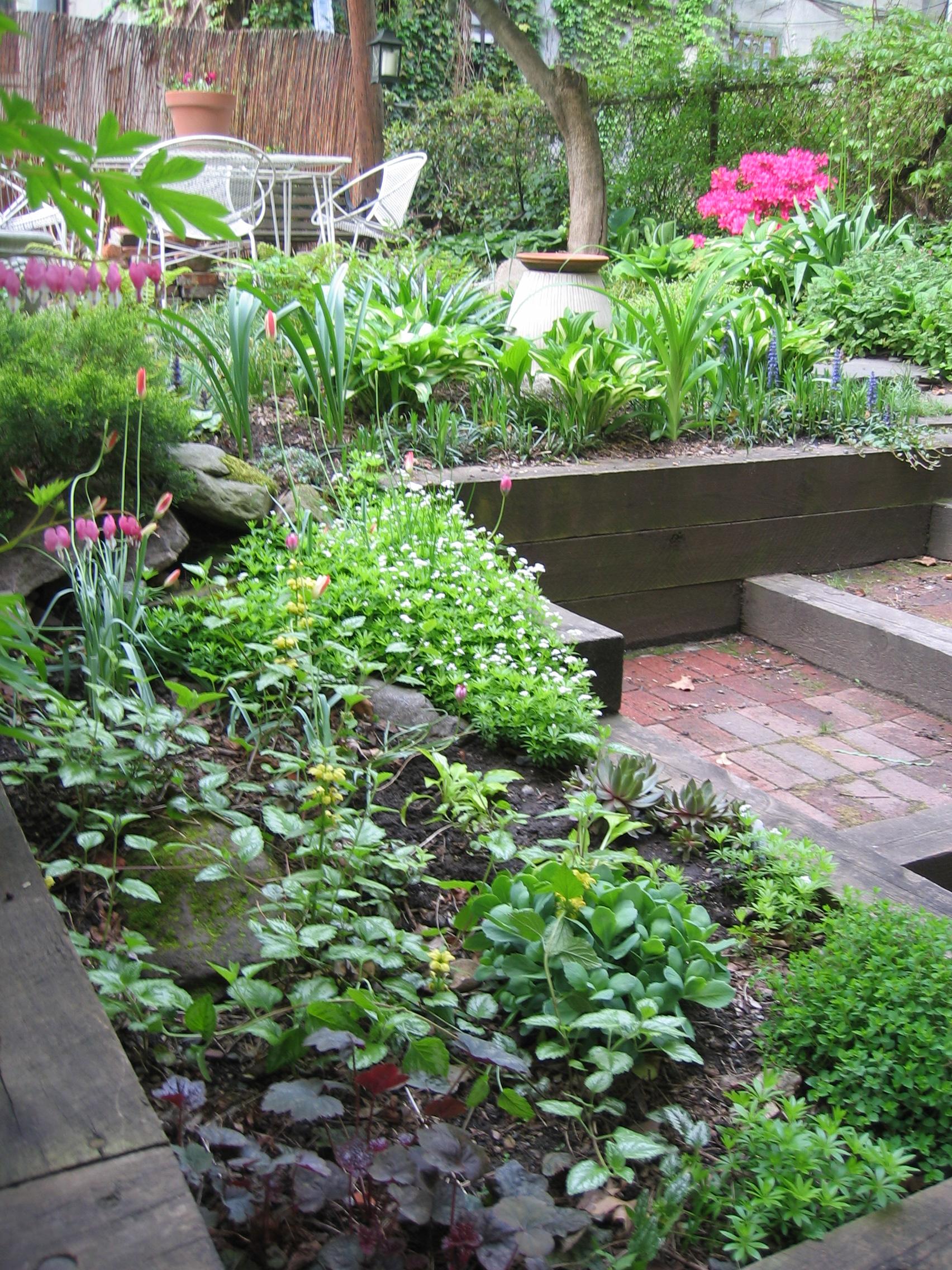 Garden Voyeur 44