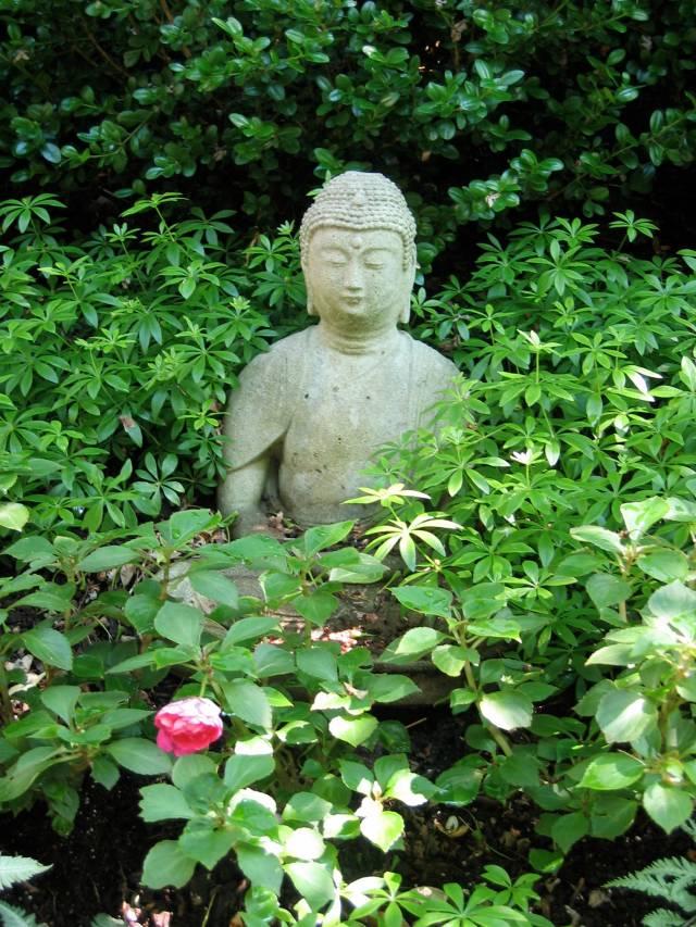 64-buddha