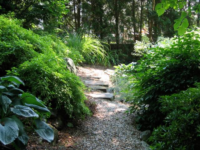 74-shady-side-path
