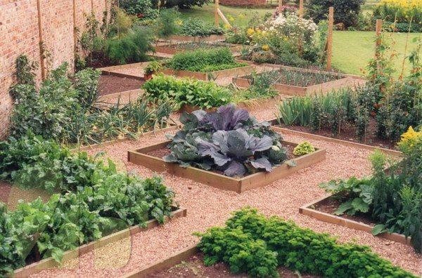 horta e jardim juntos:Ornamental Vegetable Garden Design